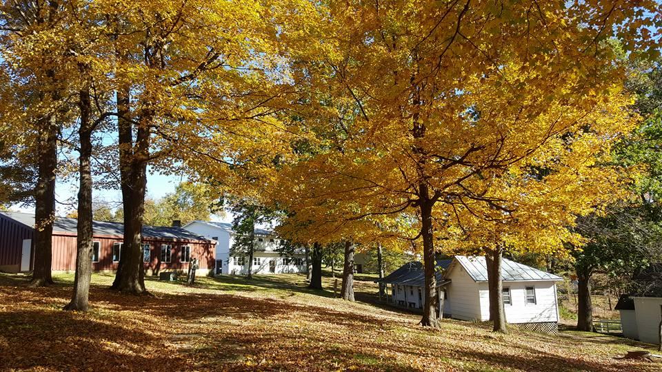 Fall at Rustic Ridge Resort 1
